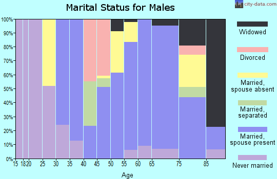 Zip code 78013 marital status for males