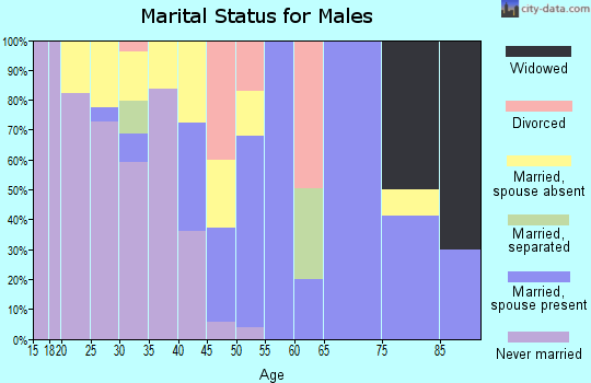 Zip code 78019 marital status for males