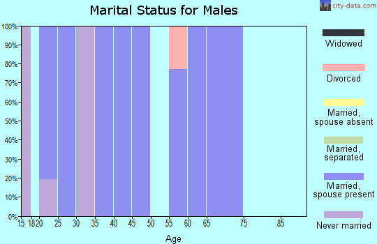 Zip code 78057 marital status for males