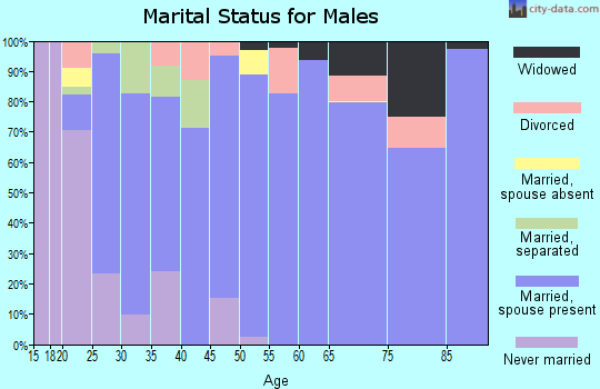 Zip code 78076 marital status for males