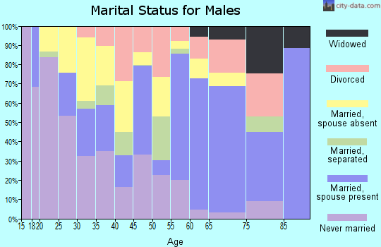 Zip code 78118 marital status for males