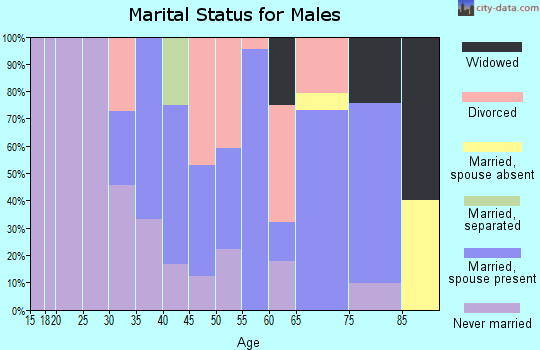Zip code 78141 marital status for males