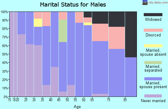 Zip code 78164 marital status for males