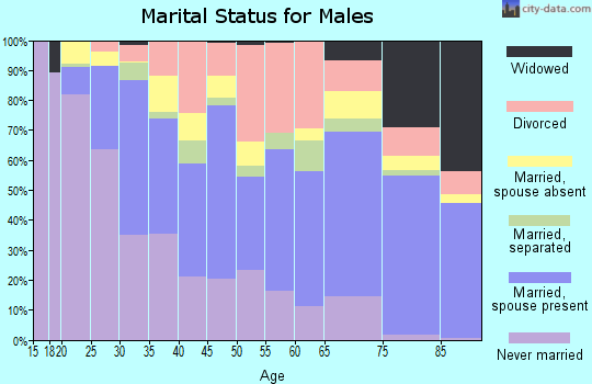 Zip code 78201 marital status for males