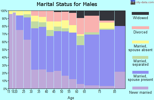 Zip code 78211 marital status for males