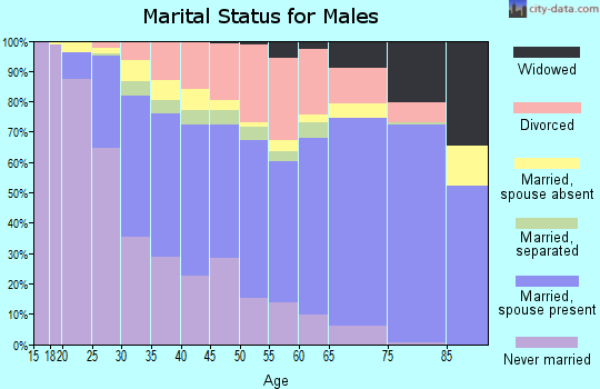 Zip code 78228 marital status for males