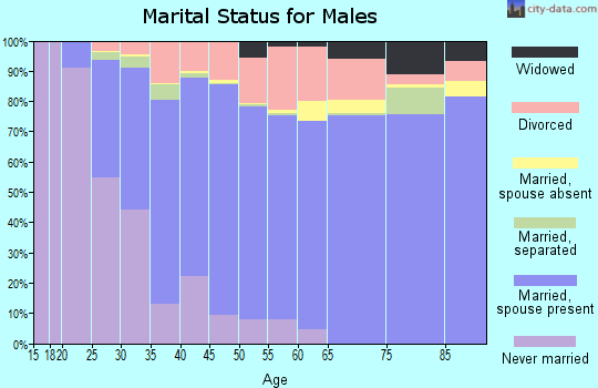 Zip code 78247 marital status for males