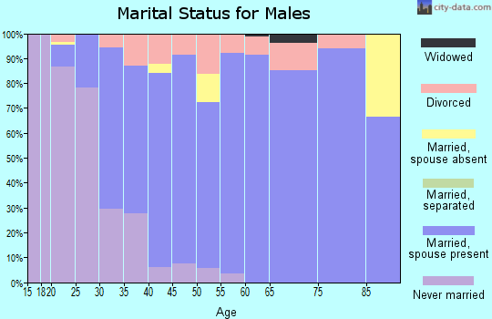 Zip code 78248 marital status for males