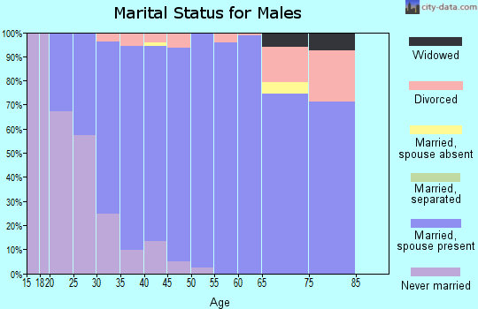 Zip code 78255 marital status for males