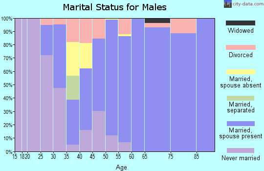 Zip code 78263 marital status for males
