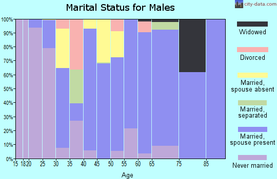Zip code 78361 marital status for males