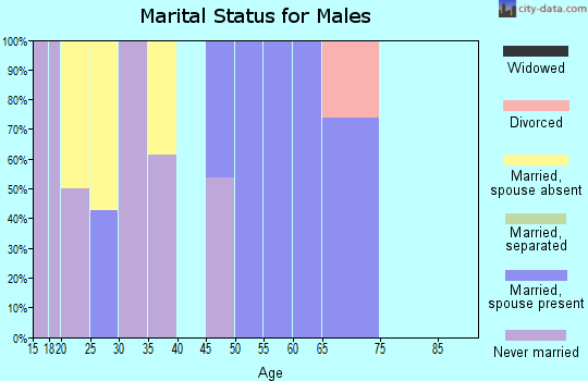 Zip code 78369 marital status for males