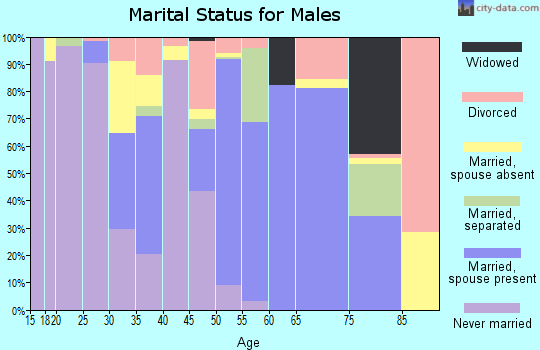 Zip code 78384 marital status for males