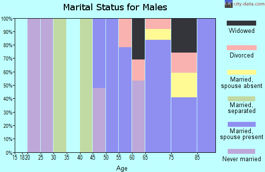 Zip code 78402 marital status for males
