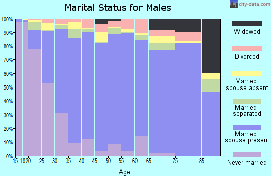 Zip code 78572 marital status for males