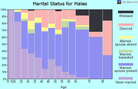 Zip code 78602 marital status for males
