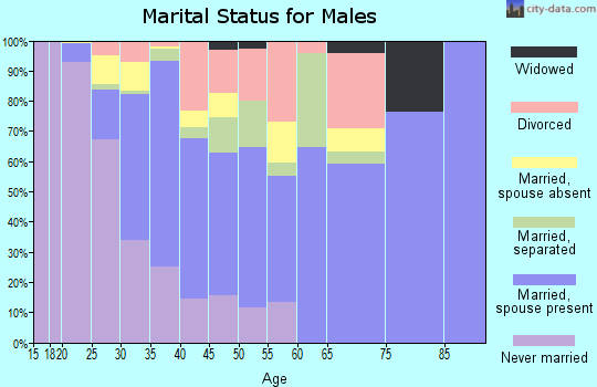Zip code 78617 marital status for males
