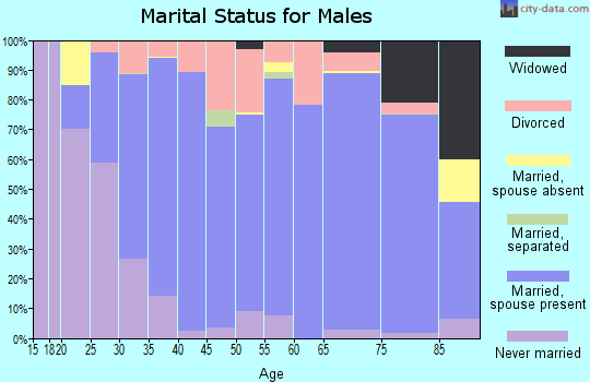 Zip code 78624 marital status for males