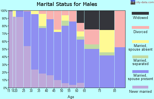 Zip code 78653 marital status for males