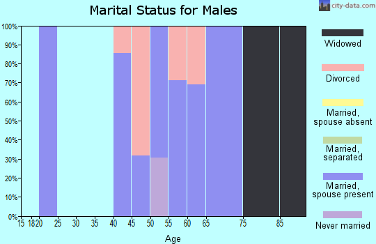 Zip code 78886 marital status for males
