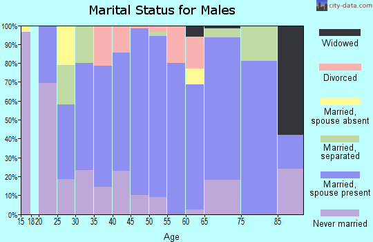 Zip code 78947 marital status for males
