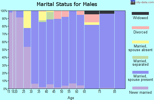 Zip code 79119 marital status for males