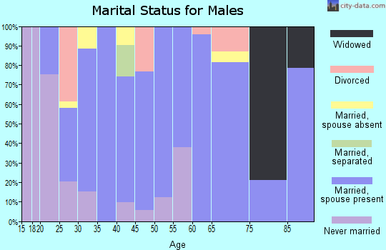 Zip code 79355 marital status for males