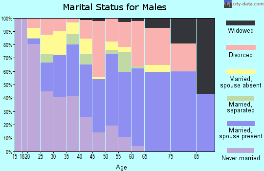 Zip code 79403 marital status for males
