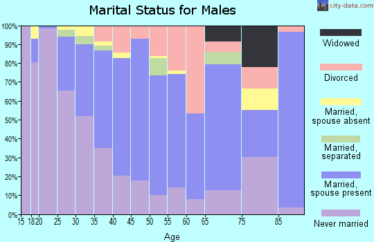 Zip code 79415 marital status for males