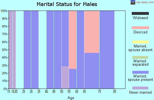 Zip code 79518 marital status for males