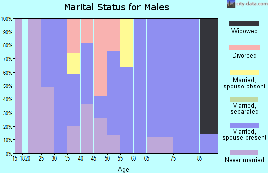 Zip code 79848 marital status for males