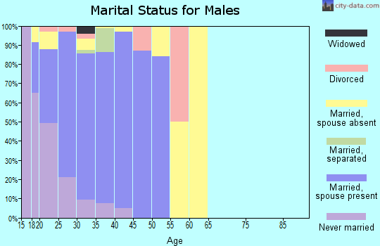 Zip code 79906 marital status for males