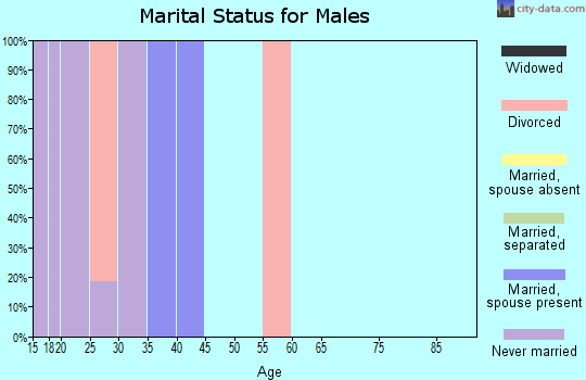 Zip code 80024 marital status for males