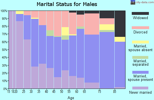 Zip code 80033 marital status for males