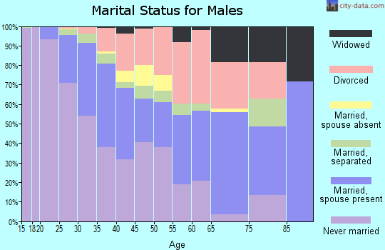 Zip code 80205 marital status for males