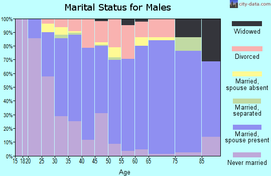 Zip code 80234 marital status for males