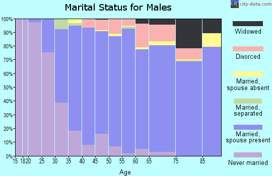 Zip code 80439 marital status for males