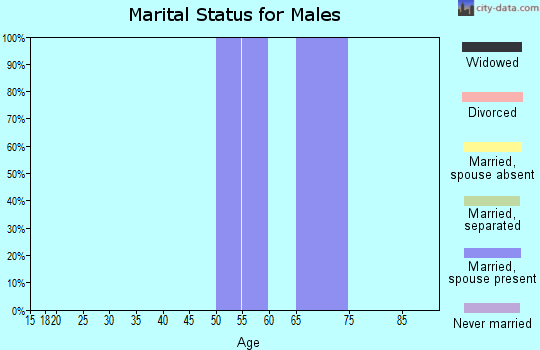 Zip code 80448 marital status for males