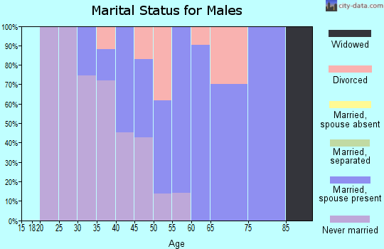 Zip code 80482 marital status for males