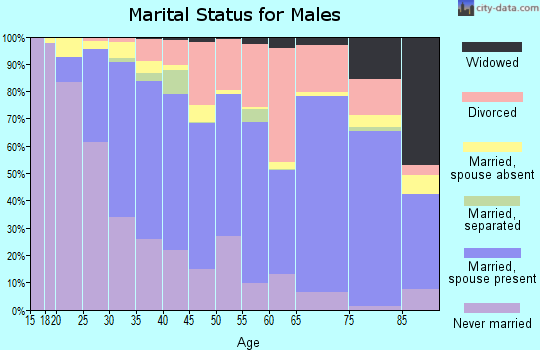 Zip code 80501 marital status for males