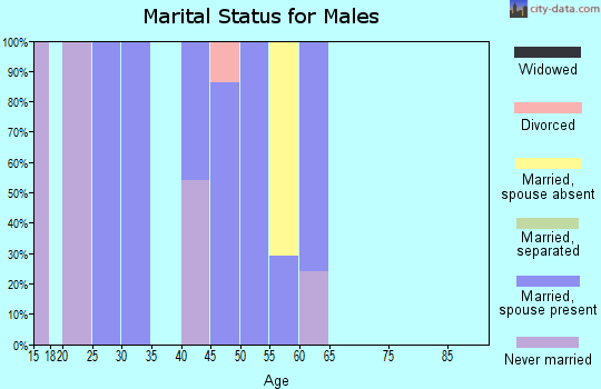 Zip code 80520 marital status for males