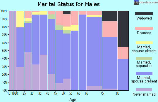 Zip code 80720 marital status for males
