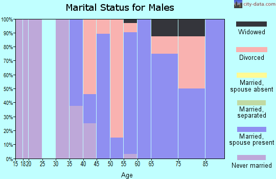 Zip code 80726 marital status for males