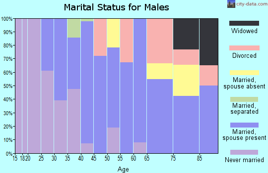 Zip code 80810 marital status for males