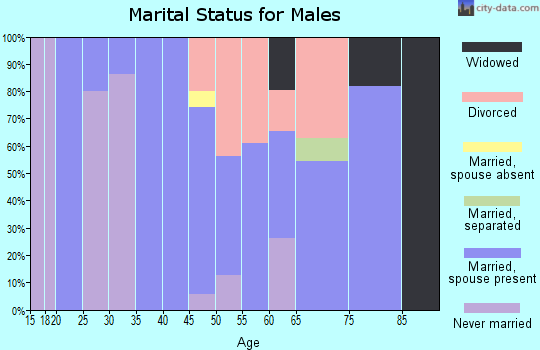 Zip code 80860 marital status for males