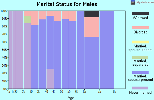 Zip code 80928 marital status for males