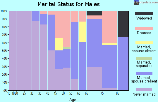 Zip code 81058 marital status for males