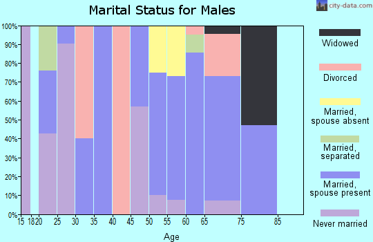 Zip code 81091 marital status for males
