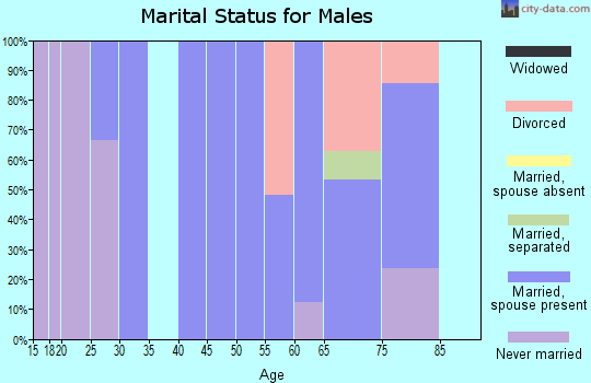 Zip code 81133 marital status for males