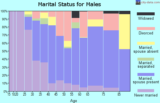 Zip code 81623 marital status for males